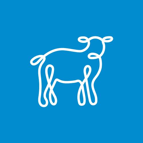 Sheepblue